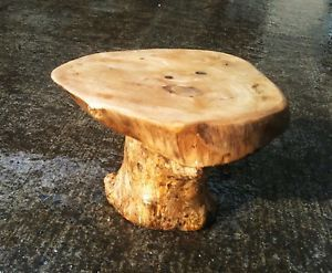 Coffee Root Plant Stand Bonsai Table Chiselcraft